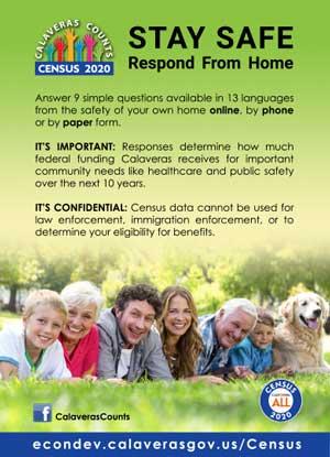 Census print advertising